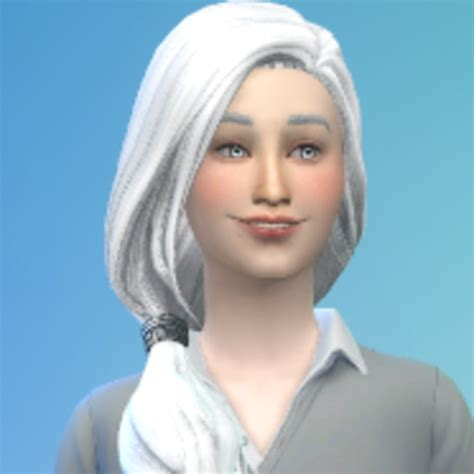 How do I mod the Sims so that I can have more than